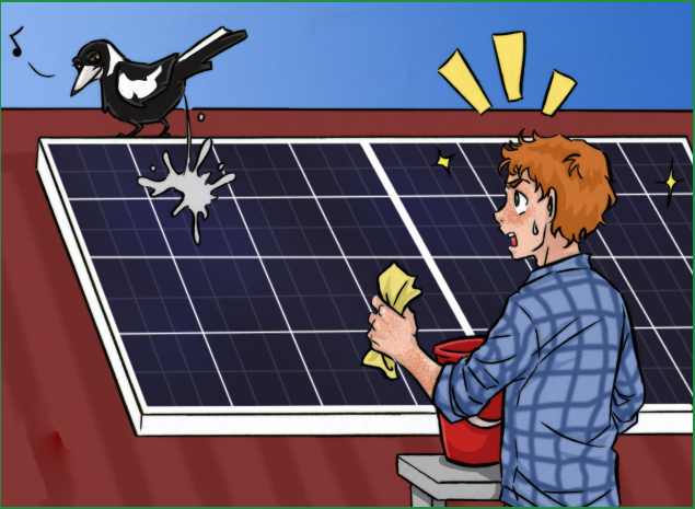 Cleaning your Solar Panels with Water and Soap